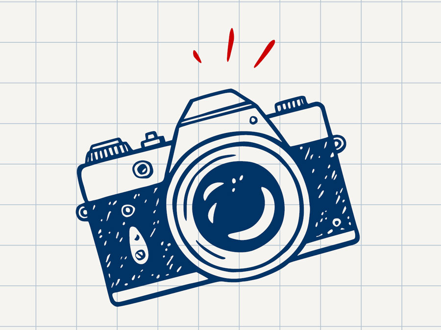 Camera picture on grid
